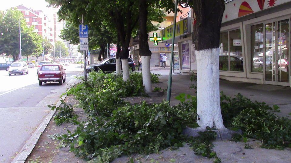 kastrenje-drvja-01