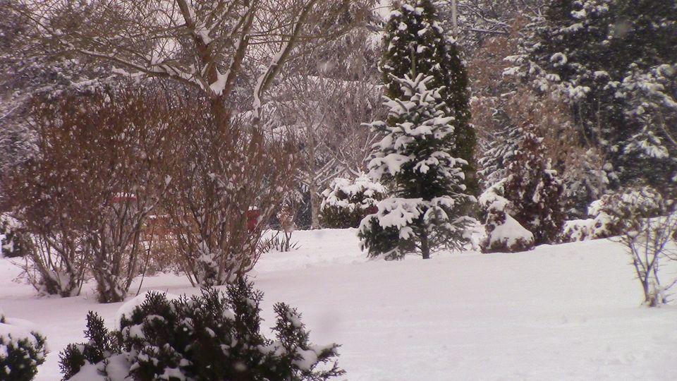 sneg-mogila-04