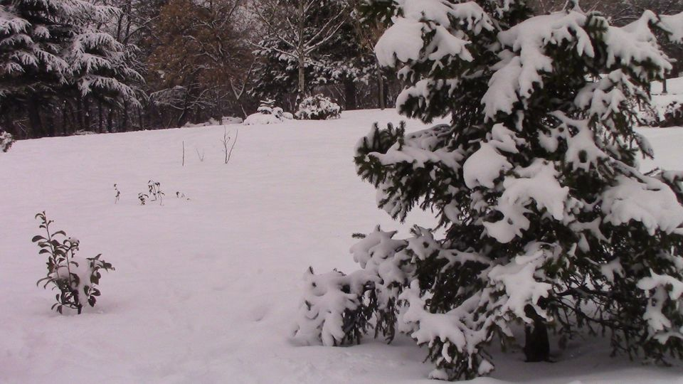 sneg-mogila-18