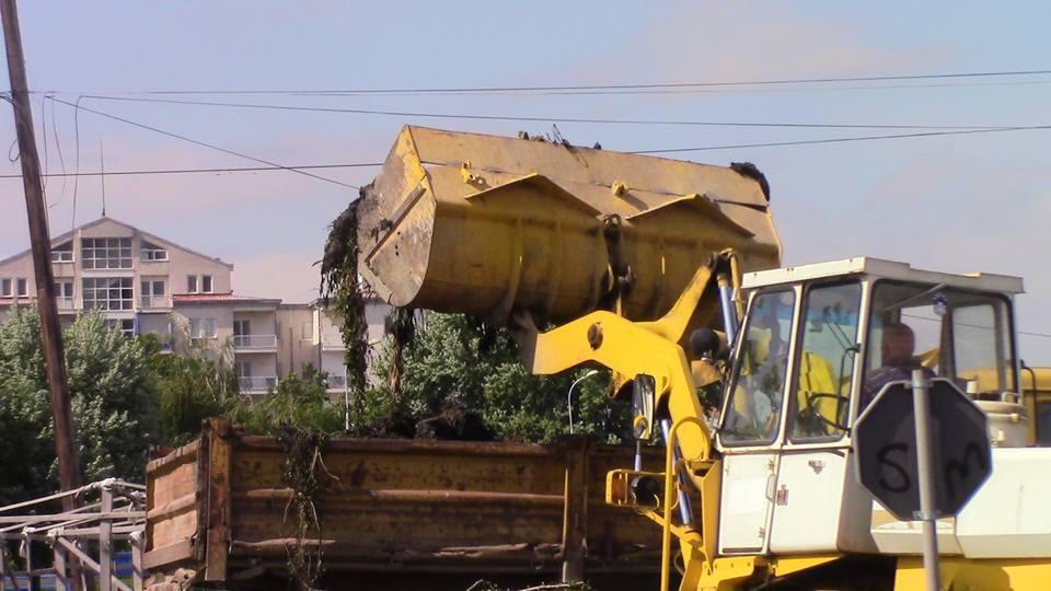 dabnicki-transport-11