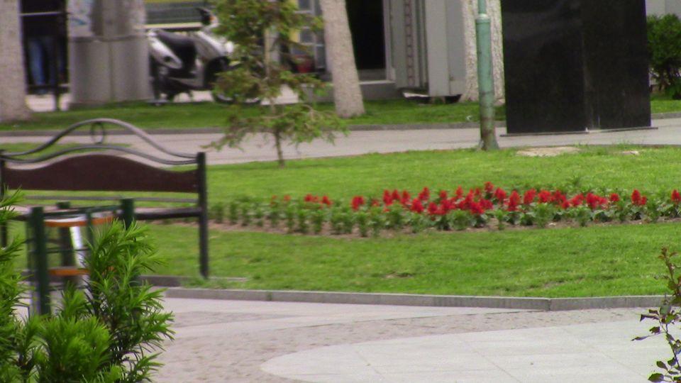 proletno-parkovi-02