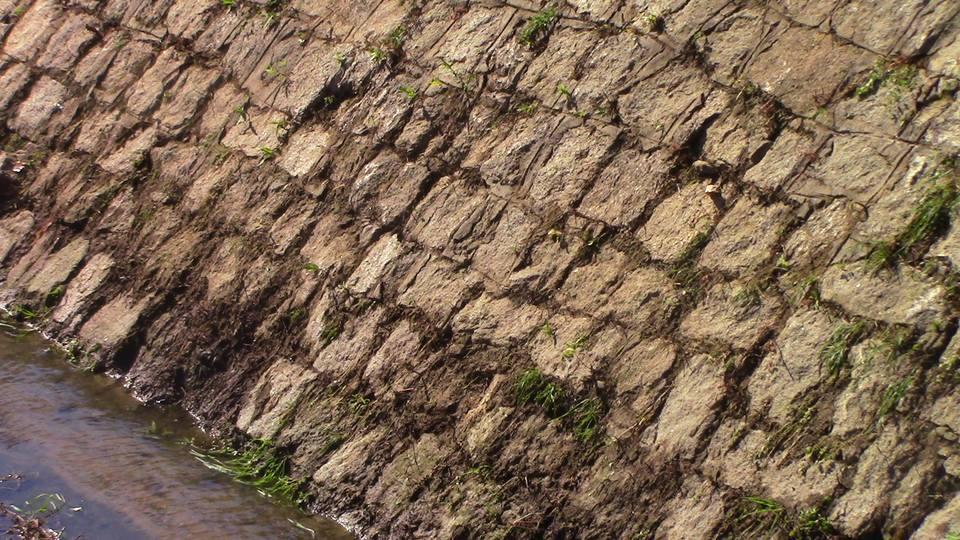 zidovi-kanal-14