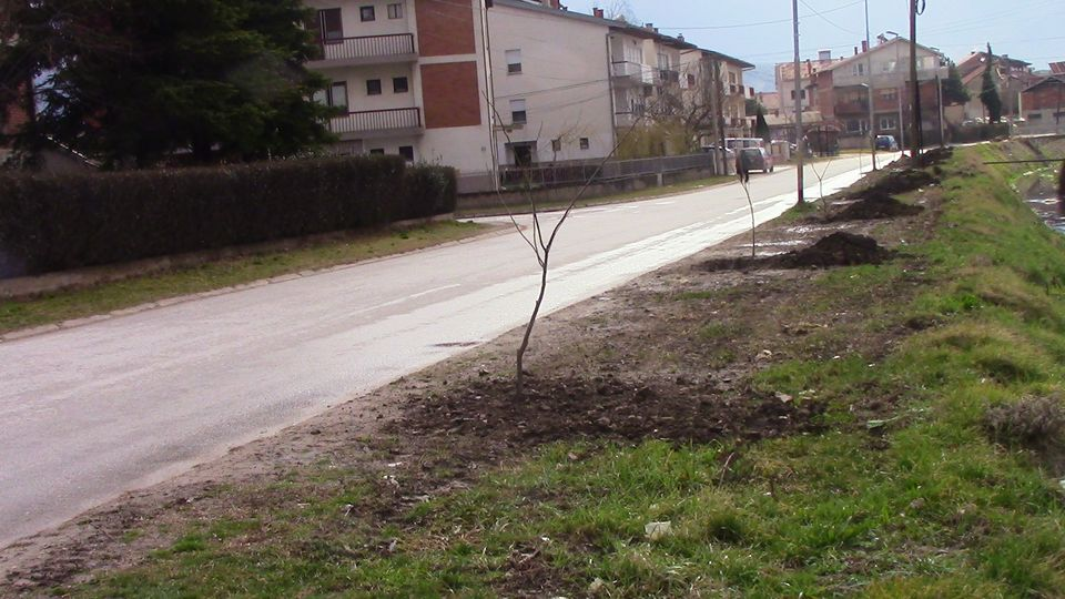 albicija-dabnicki07