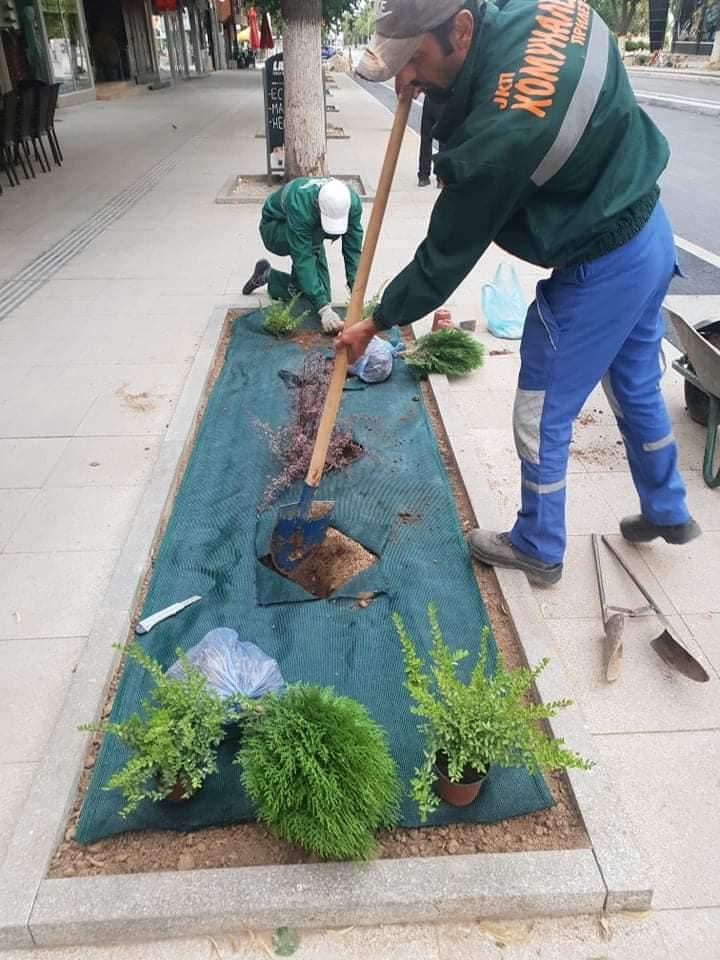 hortikulturno-ureduvanje-03